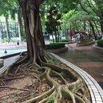 Wan Chai Park (3)