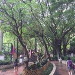 Wan Chai Park (4)