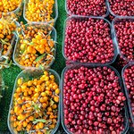 Sea buckthorn and redcurrant berries at the market