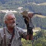 Bilde fra Greifvogelpark