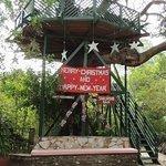 Fig Tree Camp-bild