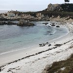 Start of Pacific Grove Section