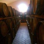 Foto van Azienda Agraria Perticaia