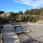 Waiariki Pools (Ngawha Springs Hot Pool) Foto