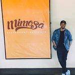 Mimosa Foto
