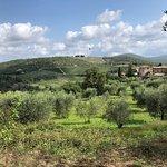 Foto di Tuscany Bicycle