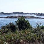 Foto de Gavrinis Island