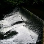 Foto de Aberdulais Tin Works & Waterfall