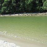 Praia maravilhosa com água cristalina e esverdeada, fica a 50 km do centro de São Sebastião, mai