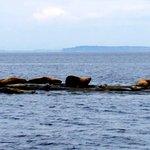 Foto de Island Adventures