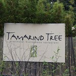 ภาพถ่ายของ Tamarind Tree