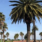 Bilde fra Rambla de Montevideo