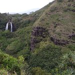 Opaekaa Falls in the distance