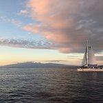 Pacific Whale Foundation ภาพถ่าย