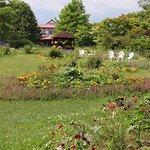 Photo of Shichiku Garden