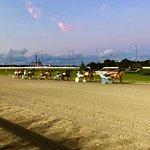 Foto Red Shores Racetrack & Casino