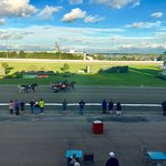 Φωτογραφία: Red Shores Racetrack & Casino