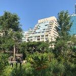 Foto Toronto Music Garden