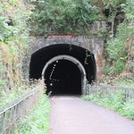 Entry into one of the tunnels on the trail.