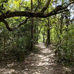 Ponce de Leon Springs State Park의 사진