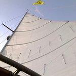 Schooner Olad Windjammer Cruise의 사진