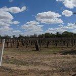 The Riversand Winery