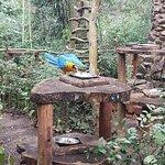 Photo of Guiraoga