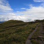 Paths to walk