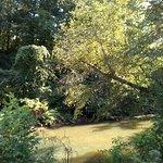 Vickery Creek Trail의 사진