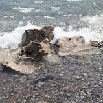 Photo of Point Pelee National Park
