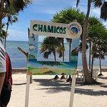 Foto de Chamico's
