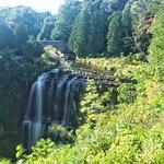Foto de Spencer Gorge Conservation Area