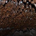 Particolare del soffitto della grotta