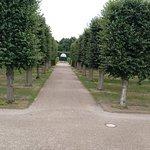 Stadtpark Foto