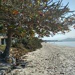 Canasvieiras Beach照片
