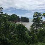 ภาพถ่ายของ Pepeekeo Scenic Drive