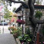 Bild från Treehouse Cafe