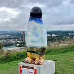 Painted Penguin on Top of Sundee Law