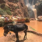 Фотография Click Excursions
