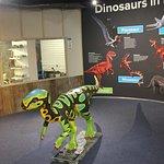 Dinos in the aquarium