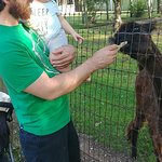 My husband and son feeding the animals