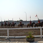 A scene from the Musical Ride