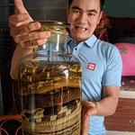 Snake wine - 7 species of snake!