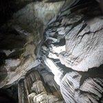Bild från Cutta Cutta Caves Nature Park