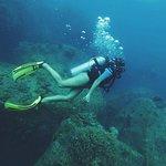 Ohlala Divers Photo