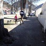 Locals walking their pet lamb in town
