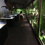 Bilde fra Jawa Timur Park 2