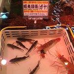 ภาพถ่ายของ Sankaku Market