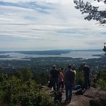 View during our Forest to Fjord nature walk