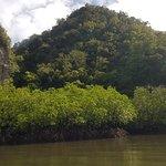 Photo of First Level Kayaking Trip